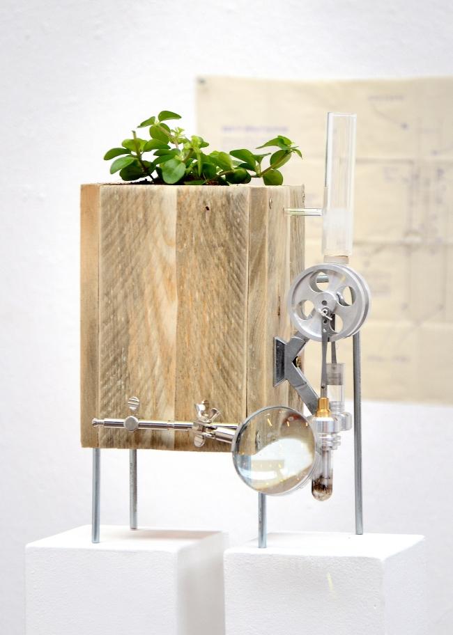 Plant Engine_01