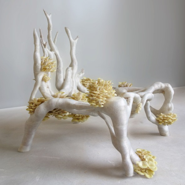 MyceliumChair by Studio Eric Klarenbeek